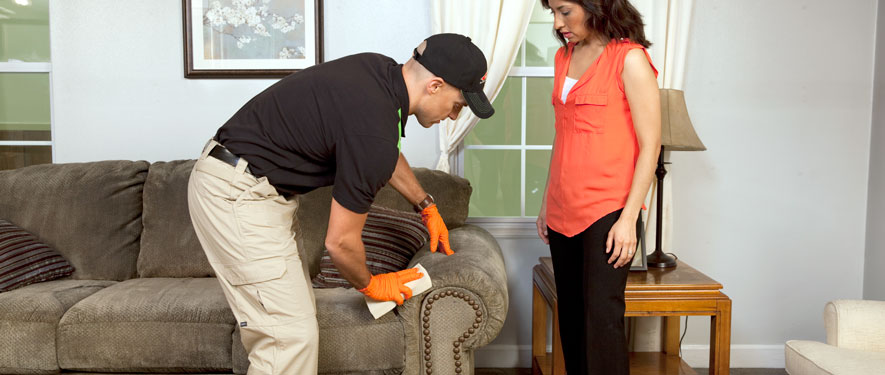 Mattapan, MA carpet upholstery cleaning